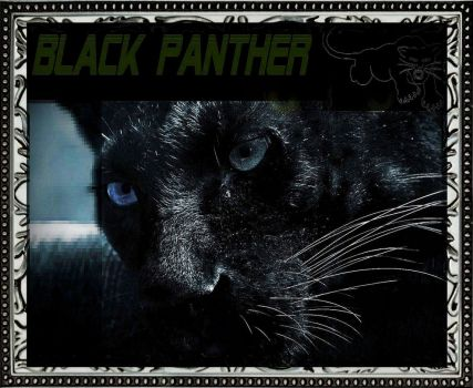 Black Panther by defmakaveli