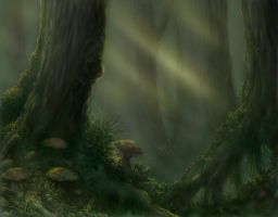 Tolkien Forest by cptphatty