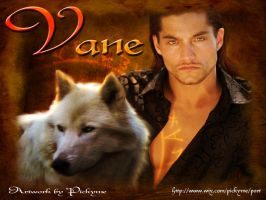 Vane by Pickyme