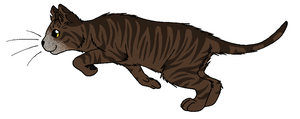 ThunderClan - Purdy by WildpathOfShadowClan