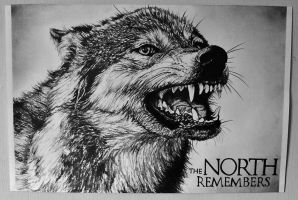 Dire Wolf - Game of Thrones by laurenmarwood
