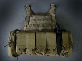 Eagle Plate Carrier 4.21.08 by res0290