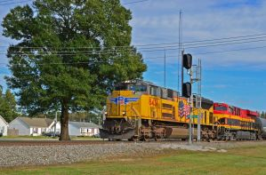 Pete and Belle by CSX5344