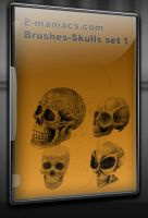Skul brushes by Radyb