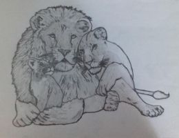 Lion family by CrysDF