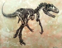Allosaurus  fragilis skeleton by watjong