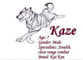 New Character: Kaze by 39-TheWolf