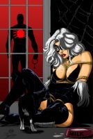 spider and black cat by amorimcomicart