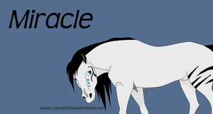 Miracle: Callavacc by BlackWolf1112-ADOPTS