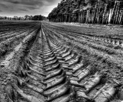 Ploughed by mmc1uk