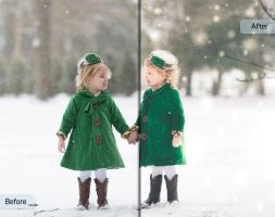 A Winter's Tale Workflow by Sleeklens - Twins by Sleeklens