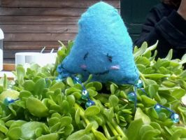 Giant squid attacking my plants by RaynieCloud