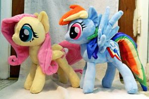 ::-Fluttershy and Rainbow Dash-:: by Soft-Sensations