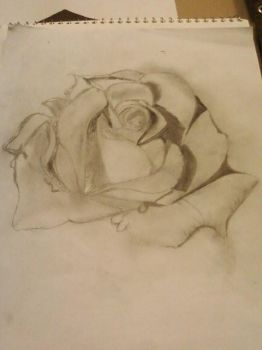 Rose of Love by song-poem-piano-life