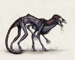 A. arborensis by TheSeaLemon