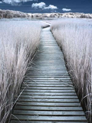Another Boardwalk by Phostructor