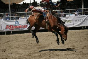 rodeo 10 by xbr0kendevotion