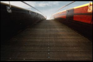 ...le bout du chemin... by andapo