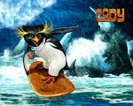 Cody Surfing by phraisohn