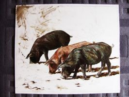 Three little pigs WIP 2 by delph-ambi