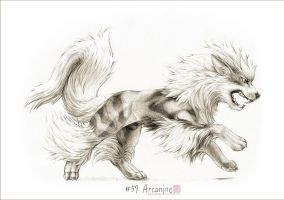 #059 - Arcanine by drawingsofpokemon