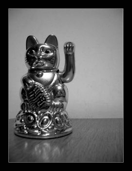 Chinese cat by makys