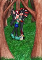 B-Day Gift: Shadow+Harmony by Lolly-pop-girl732