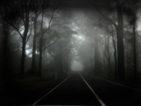 346 - Midnight Fog by mazmoore