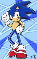 Sonic X by Megami33