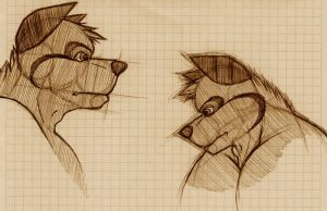 furry head sketch by wolf-lion