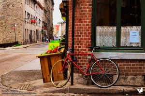 Bicycle and Restaurant 2015 - Felix Catora by StarMothPhotography