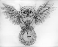 An owl by lovexmyxlifex