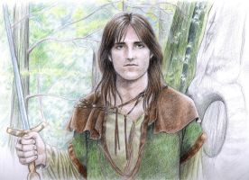 Robin of Sherwood by Evels-Selena