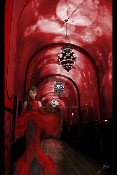 Red Gallery by Saju13