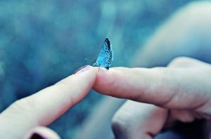 Love is like a butterfly by getia