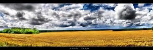 Land Pano by Nylons