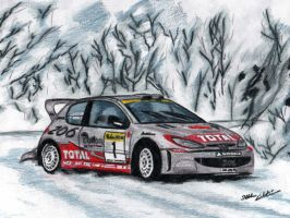 Marcus Gronholm - Peugeot 206 by I-W-E