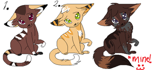 Warrior/Female cat adoptables (closed) by WarriorsloverXD