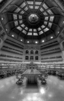 Inside State Library BW by dzign-art
