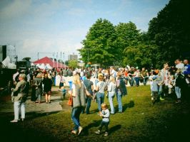 Zomerparkfeesten by MollyMotions