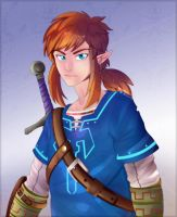 Link - Breath of the Wild by Atomoemyu