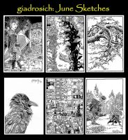 June Sketches by giadrosich