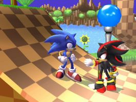 Sonic and Shadow at Brawl by GlitchGuy2