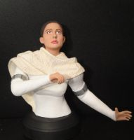 'Attack of the Clones' - Droid Factory Padme Bust by tjjwelch