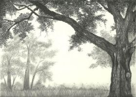 Under the Shade by aakritiarts