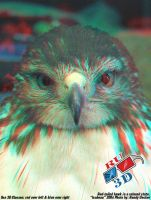 Isabeau anaglyph 2 by redtailhawker