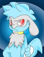 Riolu Try Outs no2 by Sonic201000