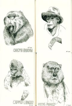Four Monkies by Teagle