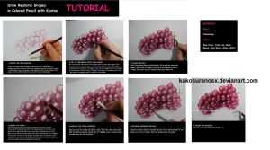Colored Pencil Drawing Tutorial - Realistic Grapes by kakosuranosx