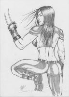 X-23 -1 by Dannith